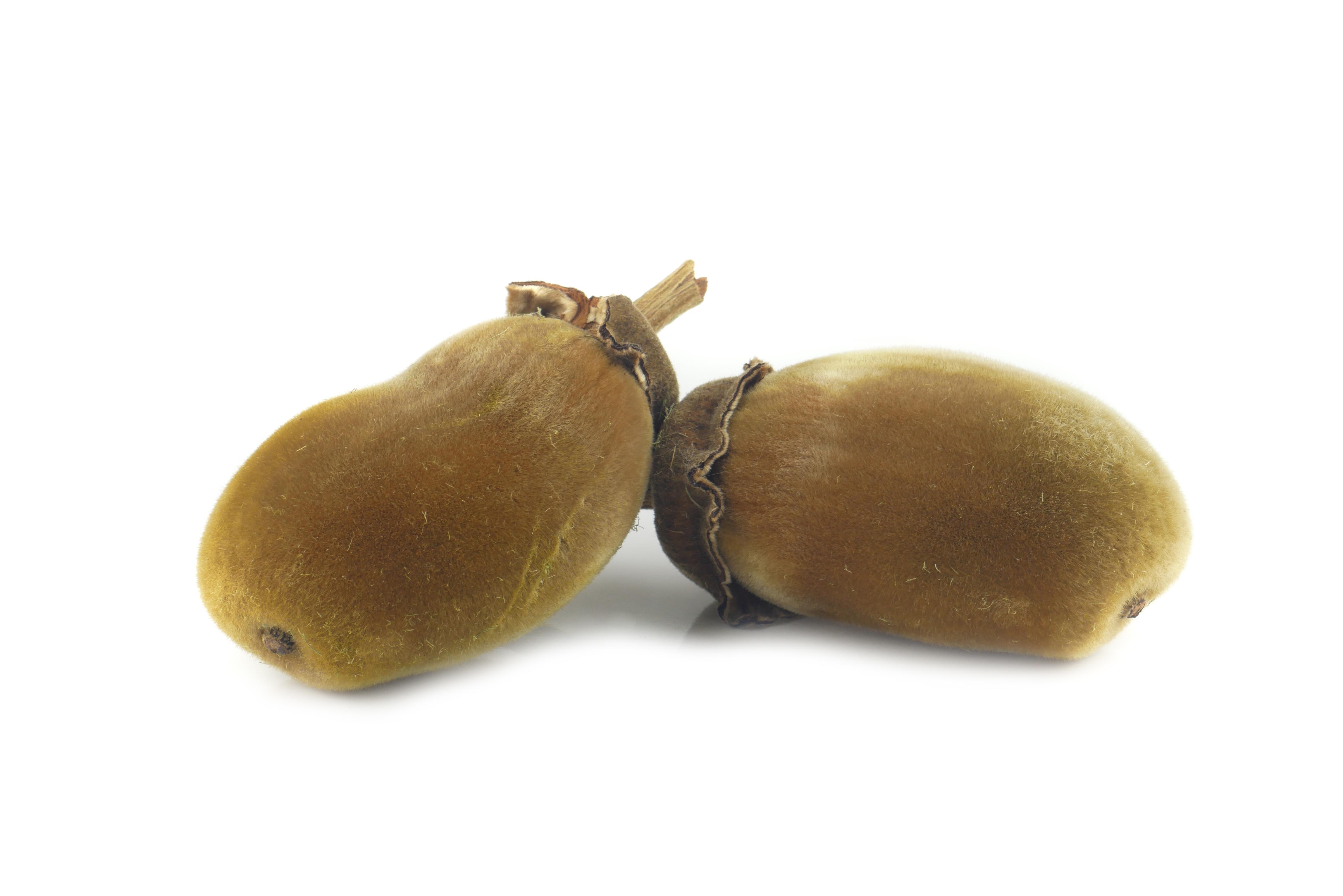 poudre de baobab à acheter